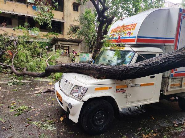 मुंबई के वडाला उद्योग भवन इलाके में एक पिकअप वैन पर पेड़ गिरने से रास्ता ब्लॉक हुआ। - Dainik Bhaskar