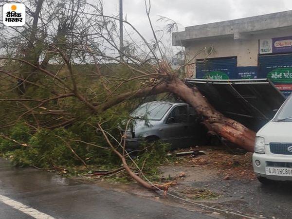 तस्वीर उना की है। यहां तेज हवा से सड़क के किनारे लगा एक पेड़ कार पर जाकर ऐसे टिक गया कि जैसे उसे खड़े रहने के लिए सहारे की जरूरत हो। बिजली के तार भी इस पेड़ में उलझकर टूट गए।