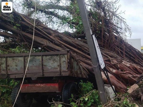 यह खौफनाक तस्वीर उना की है। यहां एक बड़ा सा पेड़ पास खड़े ट्रैक्टर पर जा गिरा। इससे ट्रैक्टर पूरी तरह से पेड़ से ढक गया।