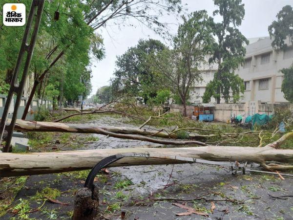 यह तस्वीर उना से इतर भावनगर की है। यहां भी तूफान ने खासा नुकसान पहुंचाया। तेज हवाओं सबकुछ इधर- उधर बिखर गया। एक साथ 5 से 7 पेड़ गिरने से यहां सड़क बंद हो गई।