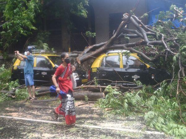 मुंबई के कई इलाकों में गाड़ियों पर पेड़ गिरने से भारी नुकसान हुआ है।