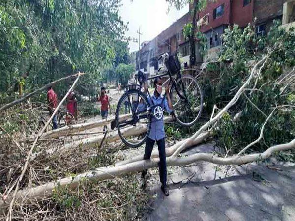 रविवार सुबह चंडीगढ़ पुलिस सड़क से पेड़ों को हटाते हुए दिखे, भी कई स्थानों पर पेड़ सड़कों पर गिरे हुए। फोटो लखवंत सिंह - Dainik Bhaskar