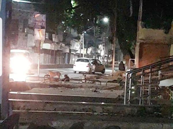 तस्वीर में दिख रही कारें नशे की चीजों के लिए रुकी हैं। इसी तरह की अड्डे बाजी यहां सड़क पर और अंदर गली में होती रहती है। - Dainik Bhaskar