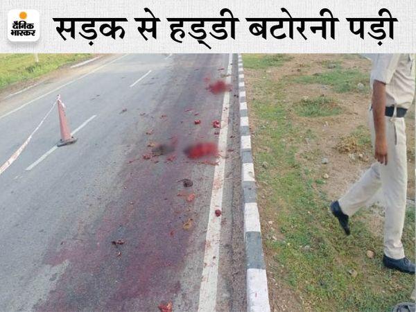 हाईवे पर बिखरे पड़े मांस के चीथड़े। - Dainik Bhaskar
