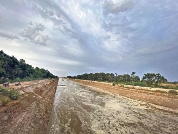 फोटो लखूवाली हैड की। पंजाब से छोड़े गए पानी ने राजस्थान राज्य में प्रवेश किया। अगले दिनों में पानी 10 जिलों में पहुंच जाएगा। फोटो|दिनेश नैण - Dainik Bhaskar