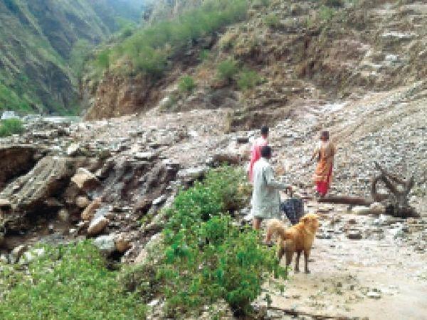 करसोग में बारिश सेबही सड़क, शिमला में वाहनों के ऊपर गिरे पेड़। - Dainik Bhaskar