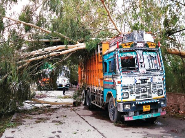 हरियाणा के कैथल जिले के गुहला चीका में तेज हवा से ट्रक पर पेड़ गिर गया।