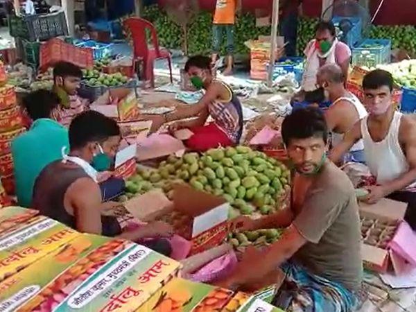 जर्दालु आम के 2000 पैकेट आज विक्रमशिला एक्सप्रेस से दिल्ली स्थित बिहार भवन भेजा जाएगा।