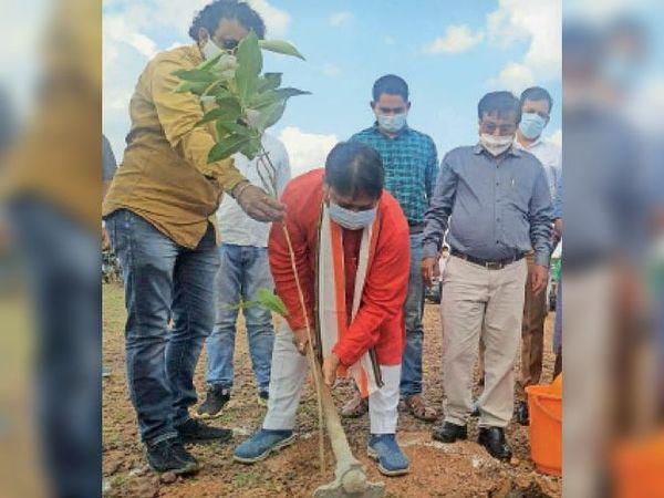 गौठान में पौधे लगाते जनप्रतिनिधि। - Dainik Bhaskar