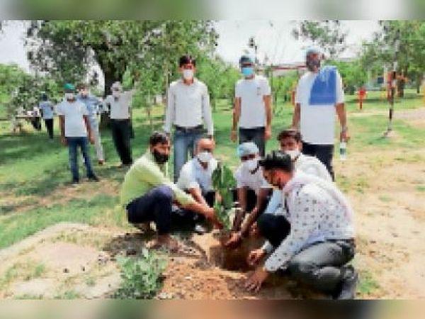 बालघाट। विश्व पर्यावरण दिवस पर रैली निकालकर समाजसेवियों ने किया पौधारोपण। - Dainik Bhaskar