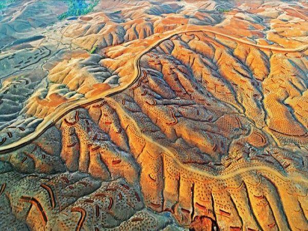 सरवन डेरी वन क्षेत्र की पहाड़ियों पर पौधरोपण के लिए गड़्ढे खोदकर की गई तैयारी। - Dainik Bhaskar