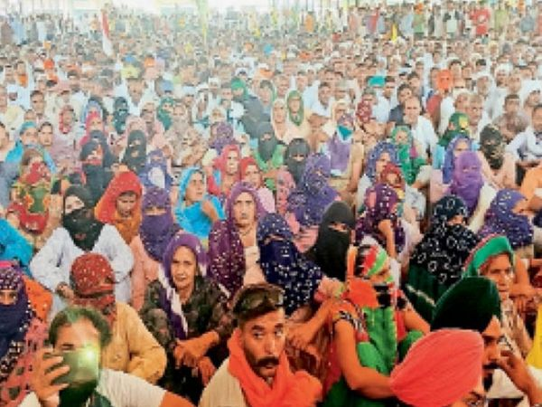 टोहाना। अनाज मंडी में आयोजित जनसभा में पहुंचे सैकड़ों किसान।