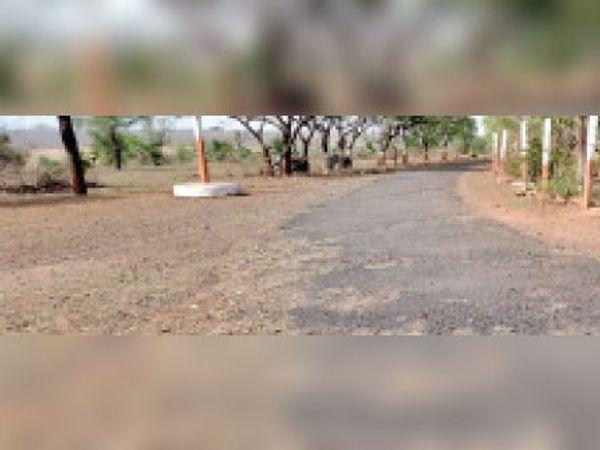 होमगार्ड दफ्तर को नेशनल हाइवे से जोड़ने वाली एकाकी सड़क। - Dainik Bhaskar