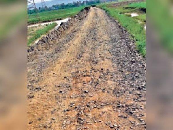 मेंटेनेंस के अभाव में जर्जर हो चुकी नीरपुर से लोहची तक की सड़क। - Dainik Bhaskar