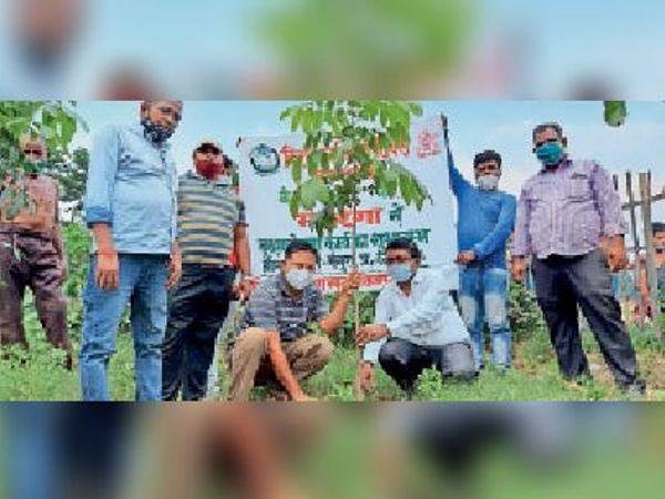 पौधरोपण करते कार्यक्रम पदाधिकारी साथ में मुखिया प्रतिनिधि। - Dainik Bhaskar