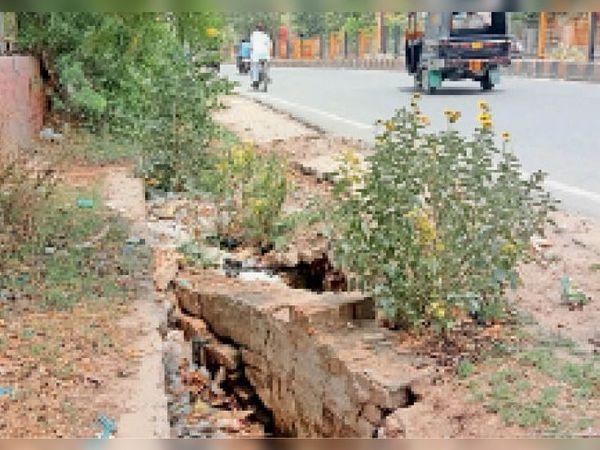 हिसार के ऑटो मार्केट के सामने टूटी हालत में बरसाती नाला। प्रशासन द्वारा सफाई नहीं की गई। - Dainik Bhaskar