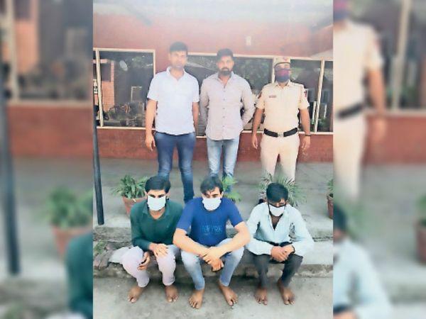 पानीपत. पशु चाेरी के मामले में गिरफ्तार अाराेपी। - Dainik Bhaskar
