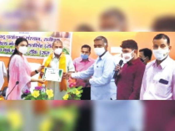 टोडारायसिंह  पर्यावरण दिवस पर उत्कृष्ट कार्य करने पर राजेन्द्र विजयवर्गीय को सम्मानित करती एसडीएम रूबी अंसार। - Dainik Bhaskar