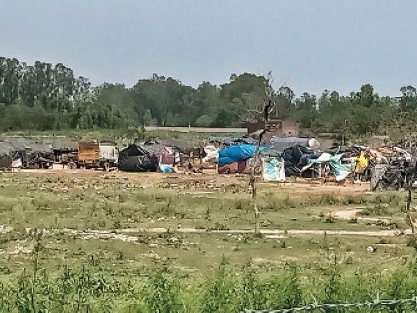 साढौरा| नकटी नदी के प्रवाह क्षेत्र में अवैध कब्जे कर बनाए गए मकान। - Dainik Bhaskar