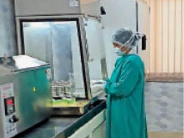 मदर मिल्क बैंक में दूध का रखरखाव करती कर्मचारी। - Dainik Bhaskar