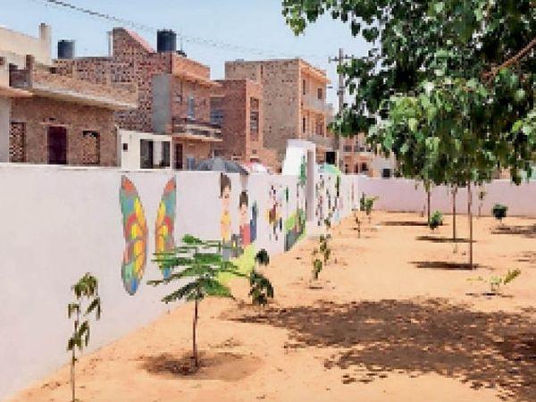 2021 : दीवार व कक्ष चुनवाए, 500 पौधों से गार्डन बनवा बदल दी तस्वीर - Dainik Bhaskar