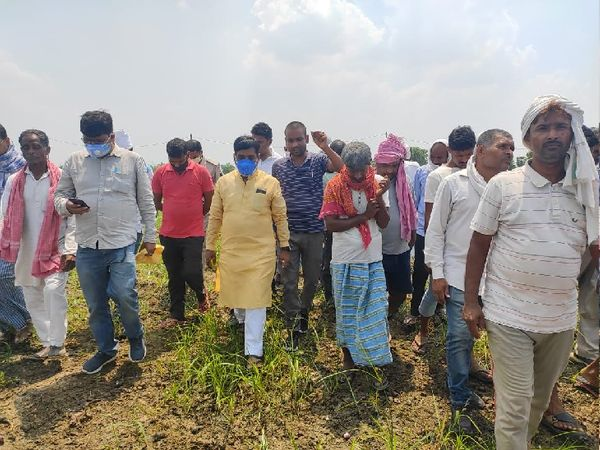 पूर्व केंद्रीय मंत्री रामकृपाल यादव को खेत दिखाते किसान। - Dainik Bhaskar