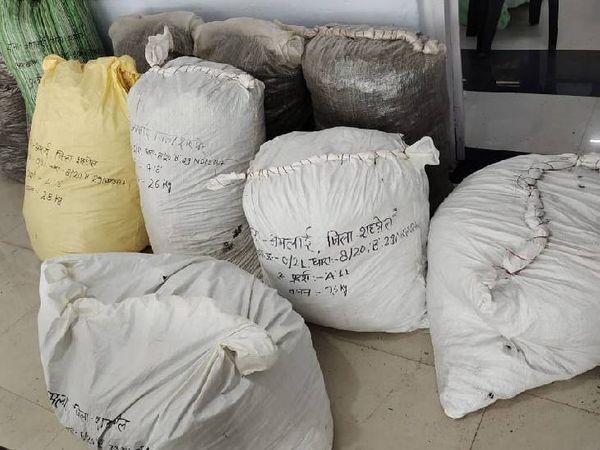 ट्रकों की सीट के नीचे गांजा बोरियों में भरा था। - Dainik Bhaskar