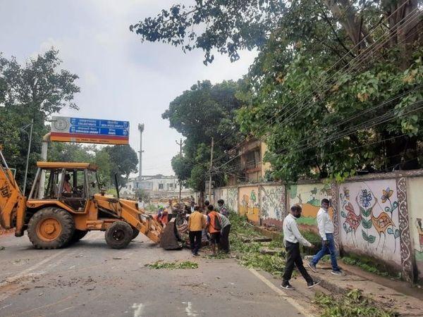 बुधवार को हुई बारिश के बाद रांची के कई इलाकों में सड़कों पर पानी जमा हो गया  और कई इलाकों में सड़क पर पेड़ गिर गए। सूचना भवन के पास गिरे पेड़ को हटाते निगमकर्मी। - Dainik Bhaskar