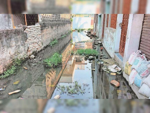 यह चर्च राेड की जगदीशपुरी लेन है, पानी निकासी नहीं होने से सड़क की है यह स्थिति - Dainik Bhaskar