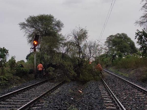 रेलवे ट्रैक पर गिरे पेड़ को हटाने का काम चालू रहा। - Dainik Bhaskar