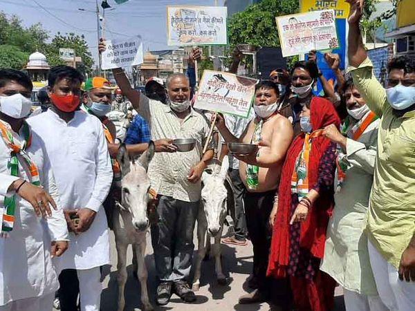 जोधपुर में शुक्रवार को पेट्रोल व डीजल के दाम बढ़ाने के खिलाफ प्रदश4न करते कांग्रेस कार्यकर्ता। फोटो एल देव जांगिड़ - Dainik Bhaskar