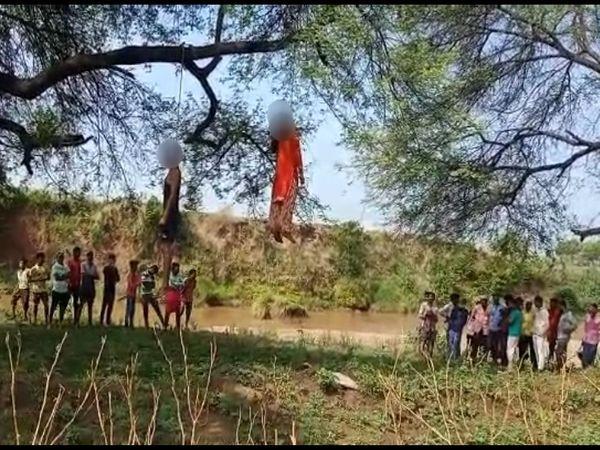इसी हालत में शव काफी देर तक पेड़ से लटके हुए थे। - Dainik Bhaskar