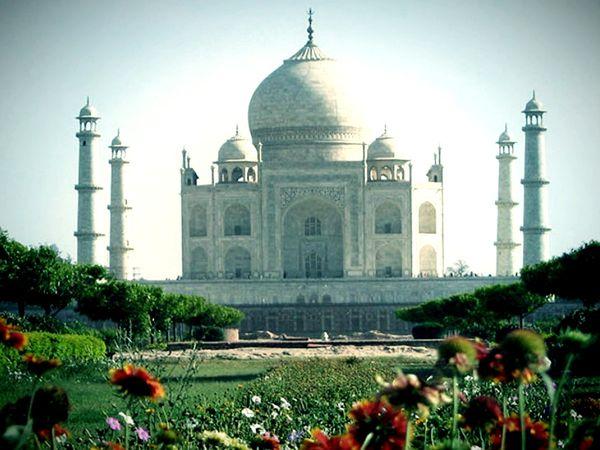 20 हजार से ज्यादा कारीगरों ने दिन-रात मेहनत करके 22 साल में ताजमहल को पूरा किया।