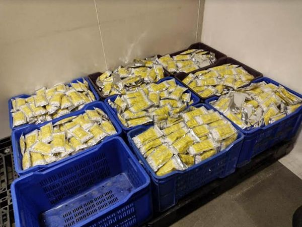 प्लास्टिक बास्केट्स में भरी जब्त की गई बिना लाइसेंंस तैयार दवाओं की खेप।