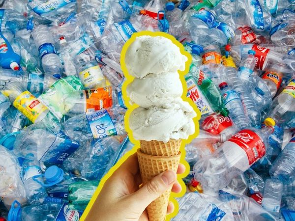 Scientists convert used plastic bottles into vanilla flavoring says University of Edinburgh research    Vanilla flavor made from plastic waste for the first time in the world, it can be used in food and pharma industry