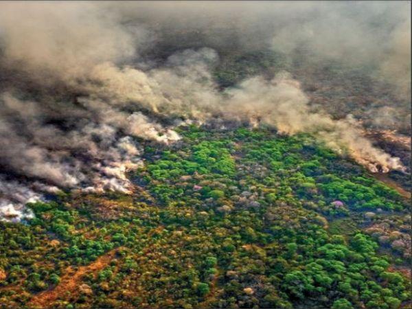 अमेजन के आसपास की झीलें, नहरें और वेटलैंड इलाके सूख रहे हैं। - Dainik Bhaskar