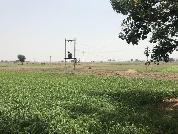 भरतपुर के मेवात इलाके में रोजगार के भी ज्यादा साधन नहीं है। गुजर-बसर का तरीका या तो खेती है या पत्थर तोड़ने का काम। पुलिस का कहना है कि ऐसे में ईजी मनी के लिए कई बेरोजगार सेक्सटॉर्शन जैसे काम करने वाले गिरोहों का हिस्सा बन जाते हैं।