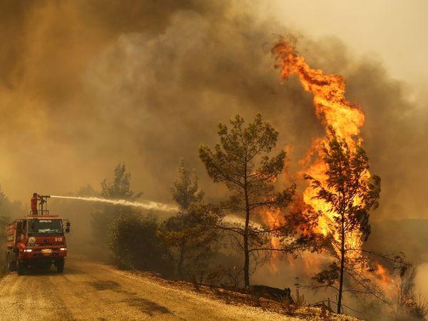 आग 36 जगहों पर काफी समय तक लगी रही, 17 जगह तो आग बुझाने की कवायद के बावजूद लपटें उठती रहीं।