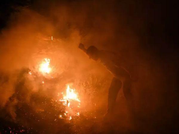 जंगलों में आग की लपटें इतनी भीषण हैं कि दमकलकर्मियों को इस पर काबू पाने में दिक्कत आ रही है।