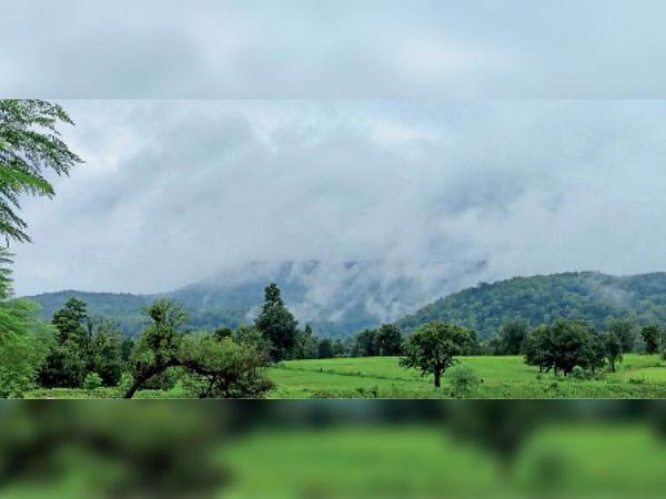 मैकल पर्वत पर फंसे बादलों से बारिश। यहां का नजारा और भी ज्यादा आकर्षक हो गया है। - Money Bhaskar
