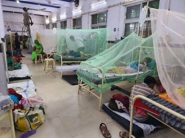 डेंगू हुआ खतरनाक, शॉक सिंड्रोम से पीड़ित मिले मरीज। - Money Bhaskar