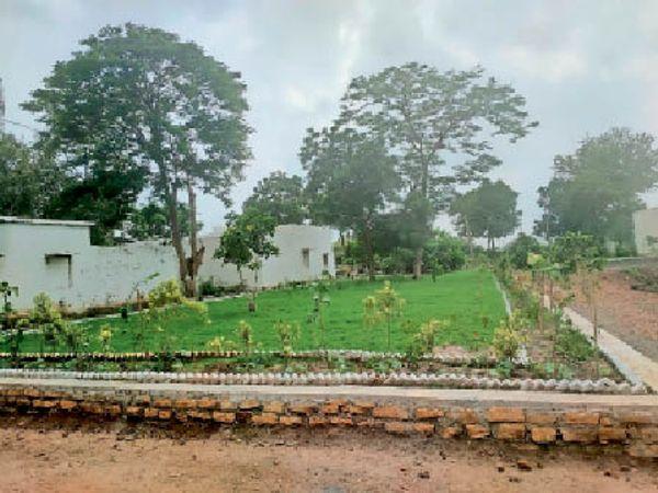 धार. गंधवानी के शासकीय परिसर में तैयार किया गया बगीचा। - Money Bhaskar