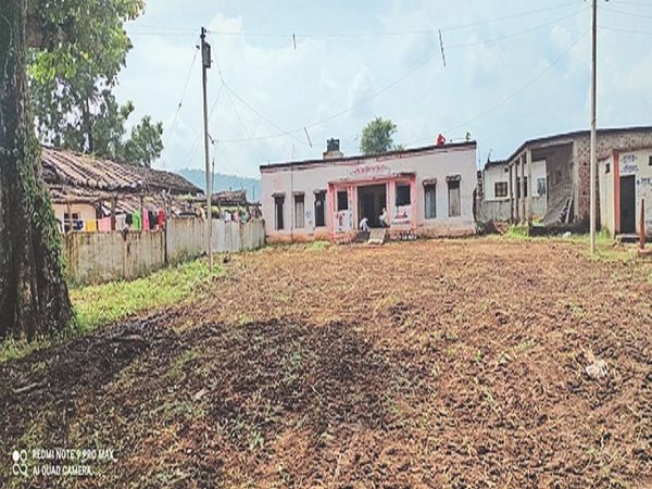प्राथमिक स्कूल परिसर से गाजर घास हटा दी गई। - Money Bhaskar