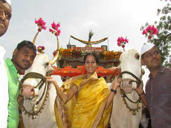 संत ज्ञानेश्वर महाराजांच्या पालखी रथाच्या बैलजोडीसह खासदार सुप्रिया सुळे... - Divya Marathi