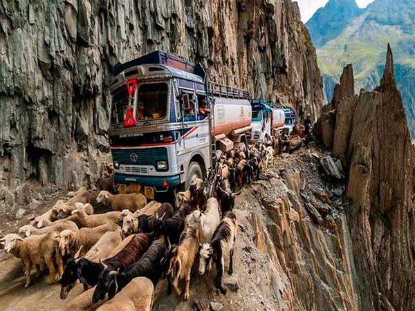 जोजी ला पास भारतातील सर्वात भयावह रस्त्यांपैकी एक आहे. - Divya Marathi