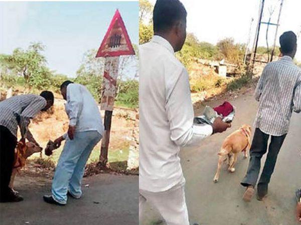 पेपरमध्ये पकडलेली टोपी श्वानाला हुंगवली आणि श्वान पुढे चालता झाला. पेपरमध्ये पकडलेली टोपी या छायाचित्रात अगदी स्पष्ट दिसत होती. - Divya Marathi