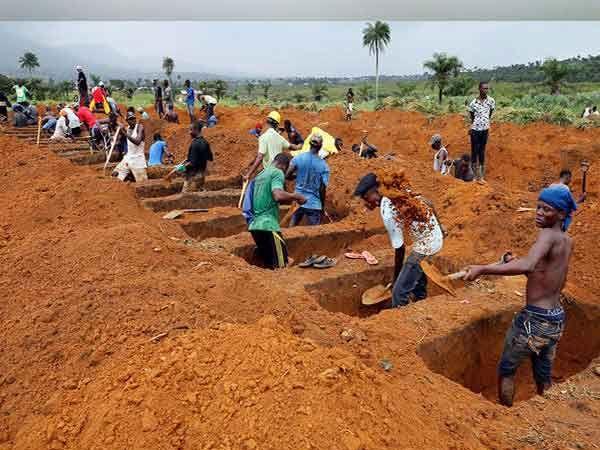 सिएरा लियोनची राजधानी फ्रीटाउन येथे कब्र खोदताना लोक.... - Divya Marathi