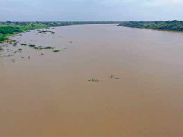 सर्वदूर कोसळलेला व मुक्कामाला आलेल्या या पावसामुळे गोदावरी नदीचे पात्र दुथडी भरून वाहत होते. मराठवाड्यात सुमारे ७८ टक्के पावसाची नोंद झाली.                    छाया: रमेश बोबडे, जालना - Divya Marathi