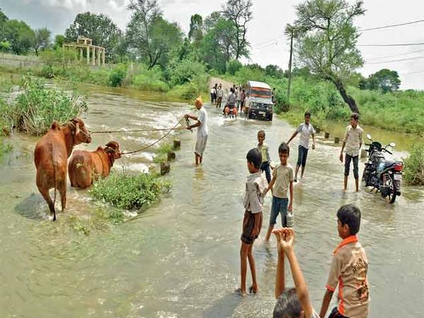 उस्मानाबाद तालुक्यातील काजळा येथे झालेल्या पावसाने नदीच्या पुलावरून पाणी वाहत होते. छाया : आरीफ शेख - Divya Marathi