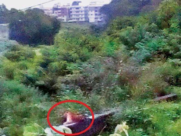 मेरी परिसरात जलगती केंद्राच्या भिंतीवर बसलेला बिबट्या. - Divya Marathi
